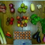 csa organic local localvore farmer food farm