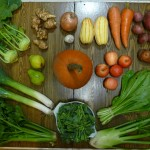 csa veggies root localvore