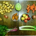 csa winter december food organic