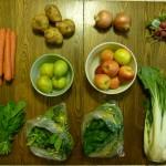 csa terry's berries organic food