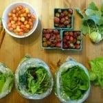csa pnw local harvest organic