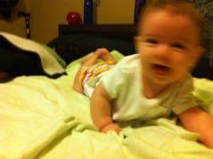 blurry phoebe