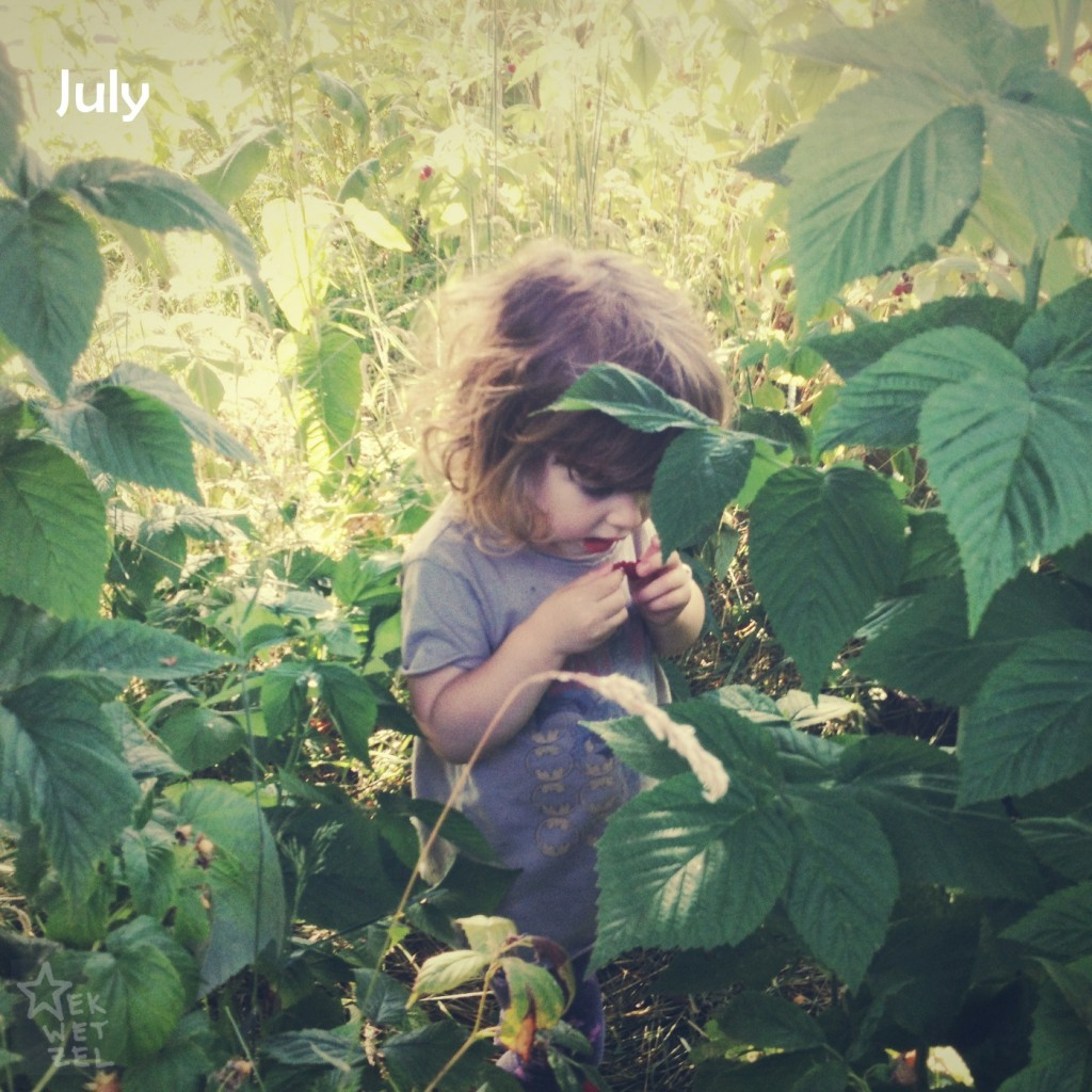 Phoebe July 2013