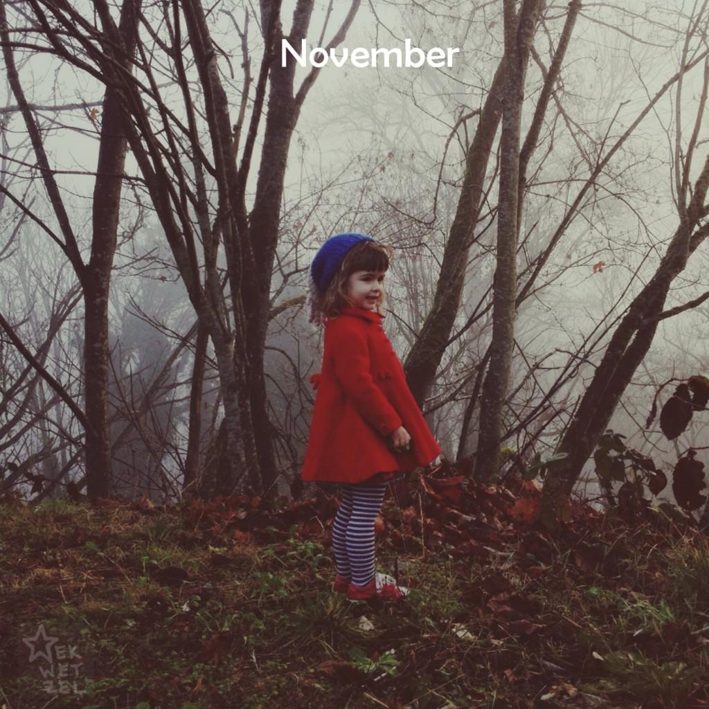 Phoebe November 2013