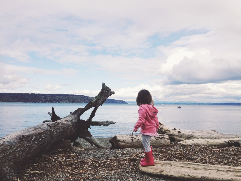 owen beach driftwood