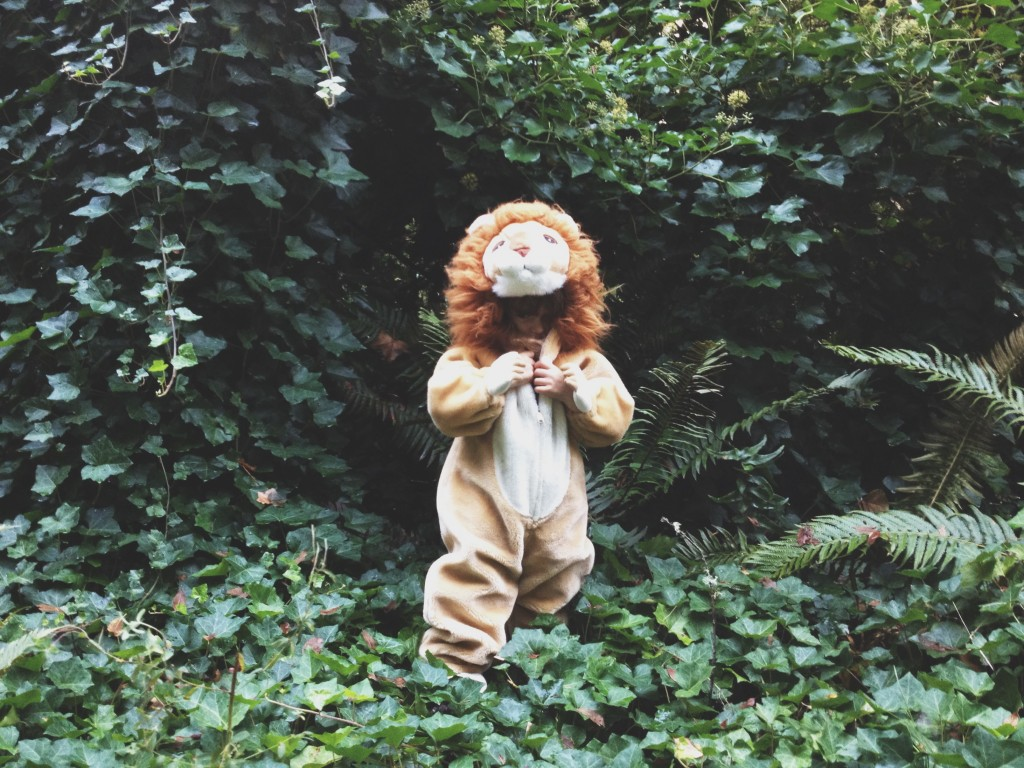 self-acceptance journey path lion suit ivy