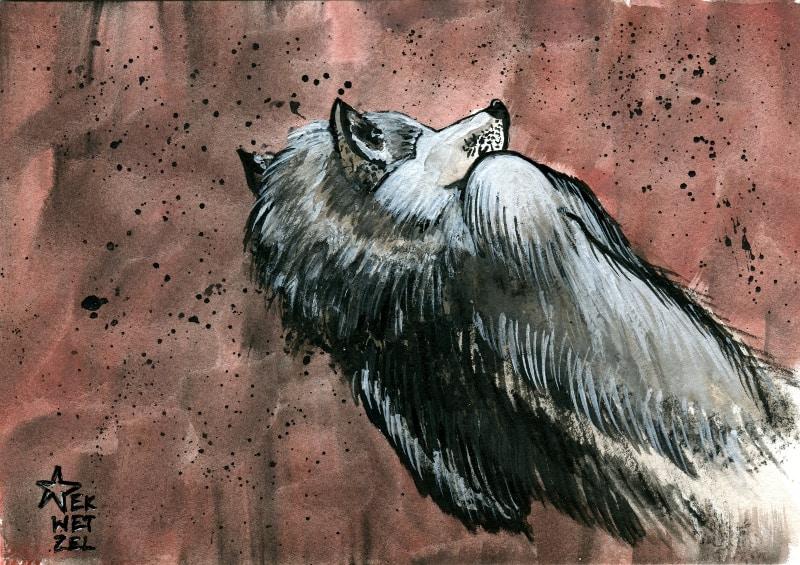 dead-wolf-800